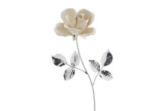 Rosa 17 cm bocciolo bianco