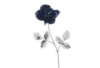 Rosa 17 cm bocciolo blu