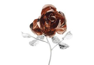 Rosa 17 cm bocciolo rosè