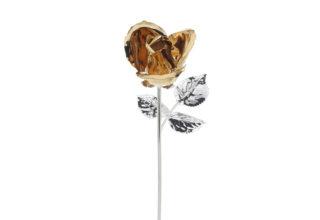 Rosa 20 cm bocciolo oro