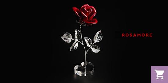Rosamore - rose profumate